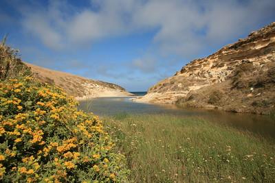Lobo Canyon mouth