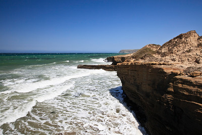 Diverse marine ecosystems such as this one near the mouth of Lobo Canyon support a wide array of life.