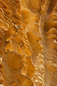 Water and wind have carved the sandstone walls of Lobo Canyon into unusual shapes.  Changing light at different times of day create interesting lighting effects.