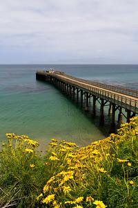 Santa Rosa Island pier