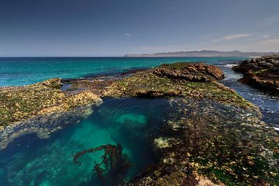 Pristine tide pools near Skunk Point.  In the background is Santa Cruz Island.
