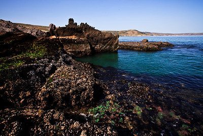 Jagged rocks and tide pools near Skunk Point