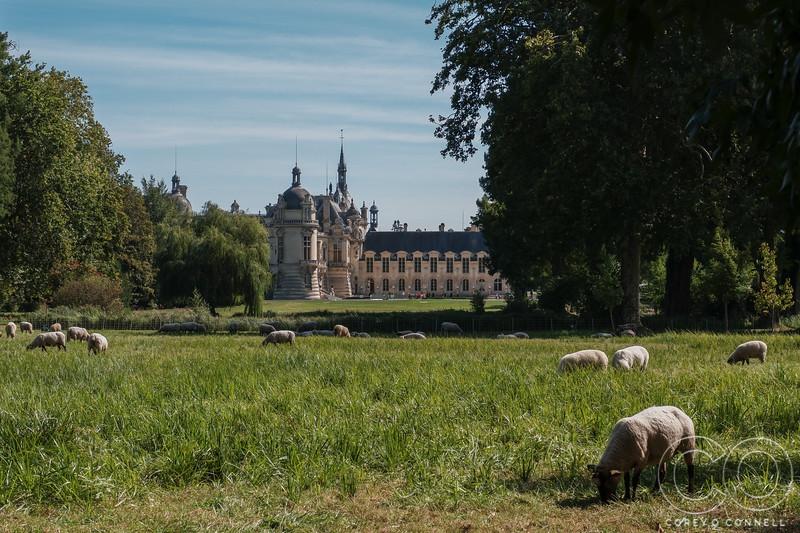 English Gardens<br /> Château de Chantilly<br /> September 2018