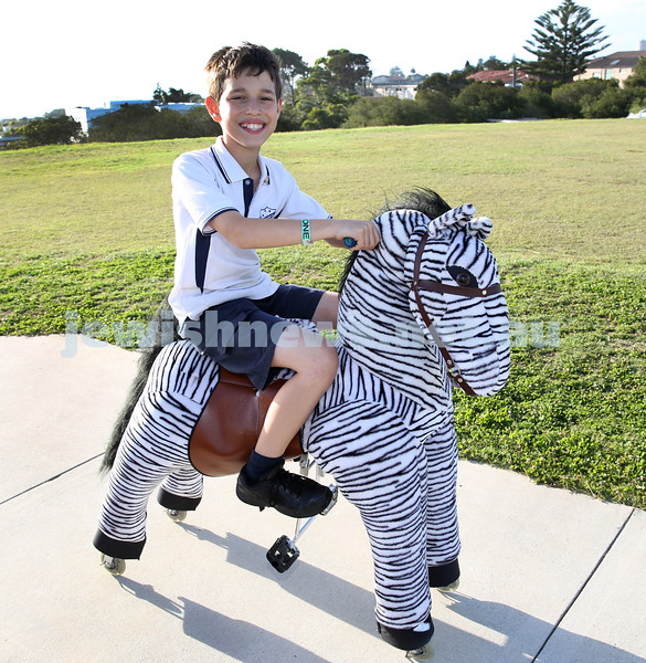 Dover Heights Shule Chanukah Party at Dudley Page Reserve. Koby Smith riding a Zebra.