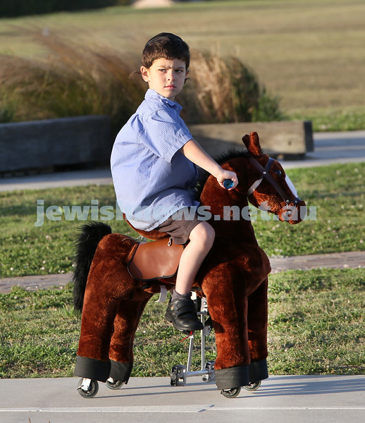 Dover Heights Shule Chanukah Party at Dudley Page Reserve. Shimon Sacher riding a pony.