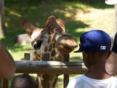 North Carolina Zoological Garden