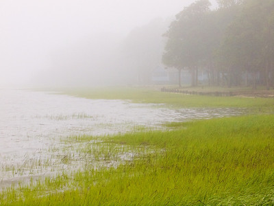 Our shore, fog  Copyright 2012 Neil Stahl