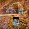 Tunnel of Love.  Tunnel under train tracks near Saluda, NC