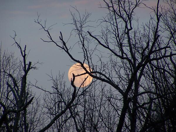 SuperMoon March 3, 2011 ...  aka perigee moon