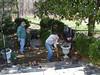 Workday at Audubon's Rust Sanctuary