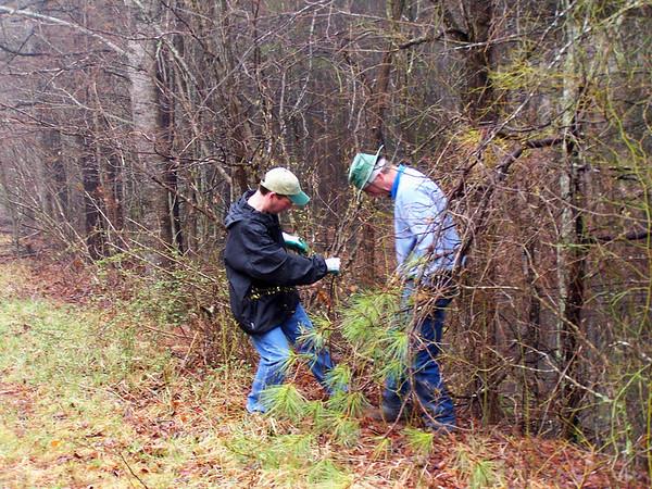 Greg Smith and Eric Vrsansky transplanting spicebush.