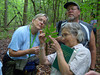 HRCVMN TRAINING:  Botanist Dr. Donna Ware (holding book) leads members of Historic Rivers Chapter on field trip in wetlands area of James City County.