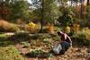 Gary Driscole at the Williamsburg Ellipse Garden