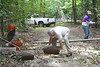 HRCVMN VOLUNTEER SERVICE PROJECT:  Trail maintenance every Friday afternoon at York River State Park