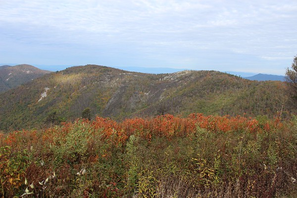 A view from Brown Mountain Overlook.