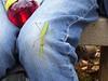 Praying Mantis visitor on Banshee Trifecta Trip