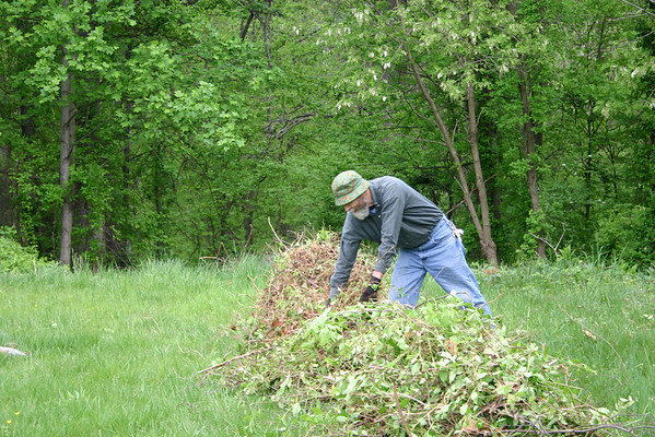 Invasive Plant Removal Day at UVA woodlands near Barracks Road , a joint project with the Charlottesville Area Tree Stewards.  Tony Russell adds to the giant pile of invasive vines that have been removed.