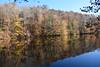 Fluvanna-LS&H-Branch Pond-Buchholz