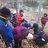 Peering under rocks and logs in search of salamanders.
