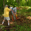 As a thank you for hosting our 2011 training, the Shenandoah VMN spent a day doing clean-up work in the wooded area near Blandy's entrance.