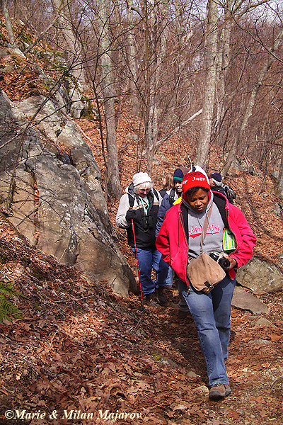 Geology Field Trip, the climb to Stoney Man look out -- upward we go!