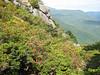 Shenandoah National Park Adopt-an-Outcrop Program:  Appalachian Clubmoss (Huperzia appalachiana) monitoring site on Old Rag Mountain