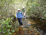 Bradwell Bay Hike<br /> photo credit: Kent Wimmer / Florida Trail Association
