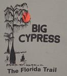 Big Cypress logo