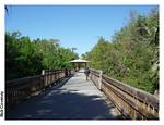 Cross Seminole Trail<br /> photo credit: Robert Coveney / Florida Trail Association