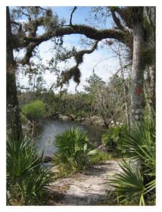 Little Big Econ State Forest<br /> photo credit: Sandra Friend / Florida Trail Association