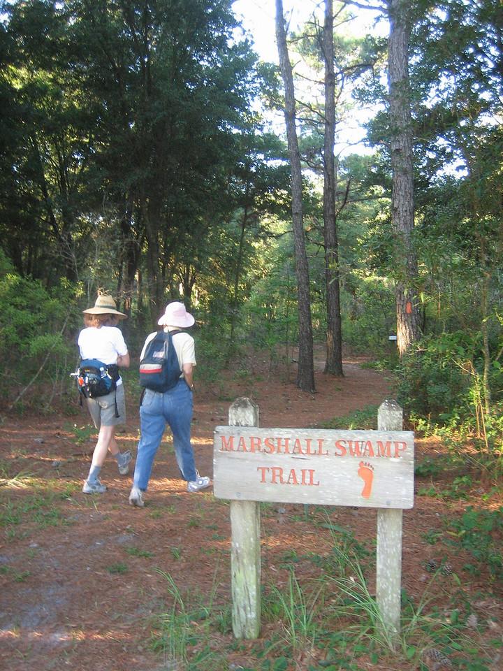 Hiking Marshall Swamp<br /> photo credit: Sandra Friend / Florida Trail Association