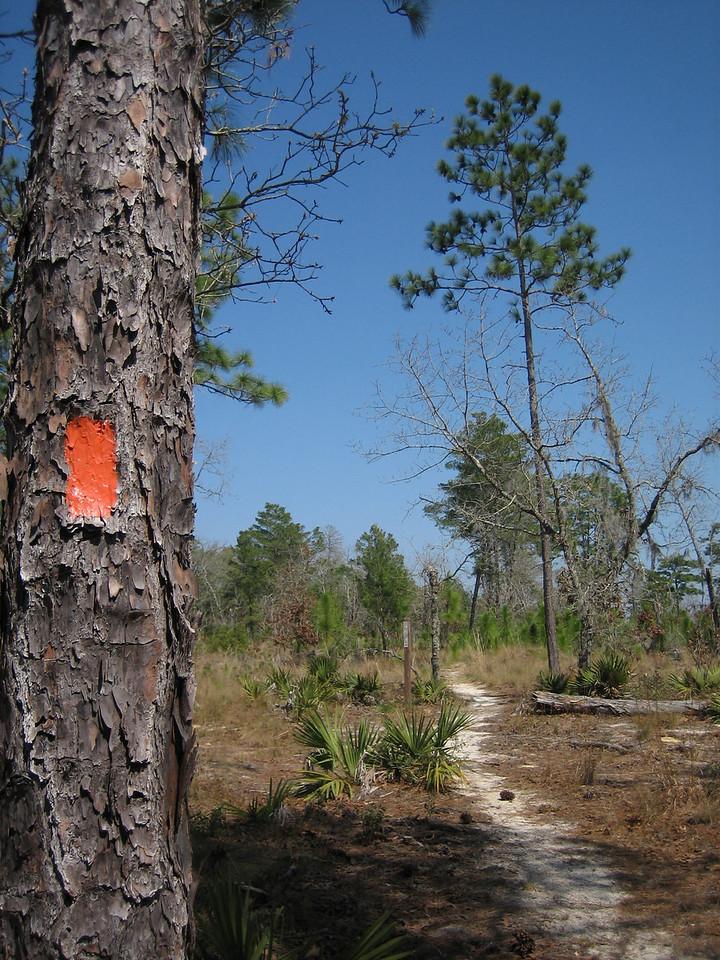Kerr Island<br /> photo credit: Sandra Friend / Florida Trail Association