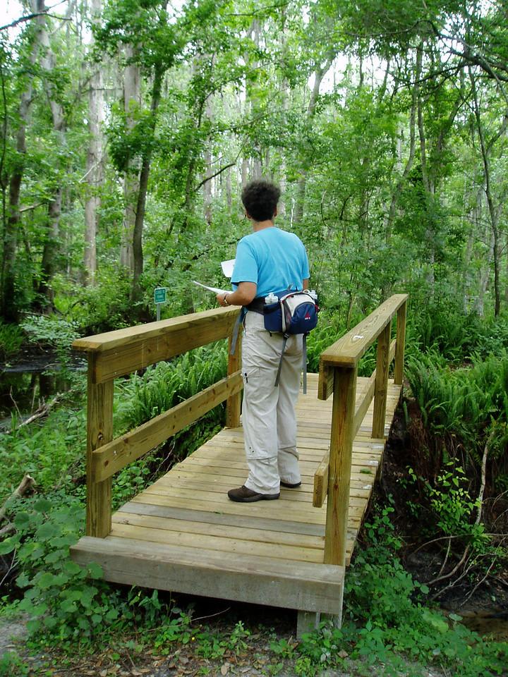 Tenoroc / Saddle Creek<br /> photo credit: Deb Blick / Florida Trail Association