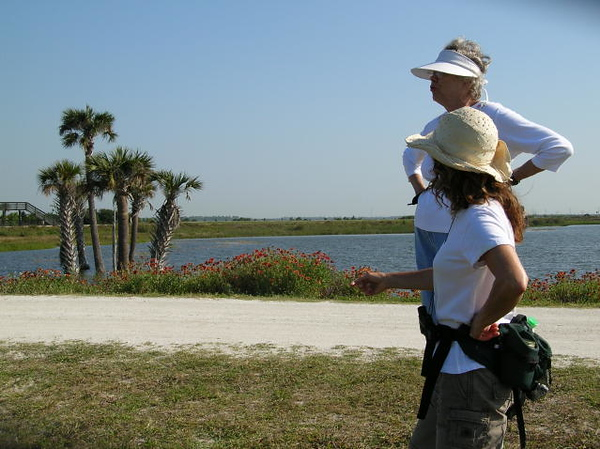 Viera Wetlands Birding Hike<br /> photo credit: Susan Young / Florida Trail Association