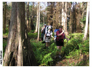 Ocean to Lake Hike<br /> photo credit: Jack Hailman / Florida Trail Association