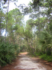 Okeeheelee Nature Center<br /> photo credit: Sandra Friend / Florida Trail Association