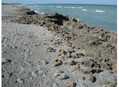Blowing Rocks Preserve<br /> photo credit: Sandra Friend / Florida Trail Association