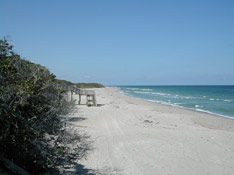 MacArthur Beach State Park<br /> photo credit: Sandra Friend / Florida Trail Association