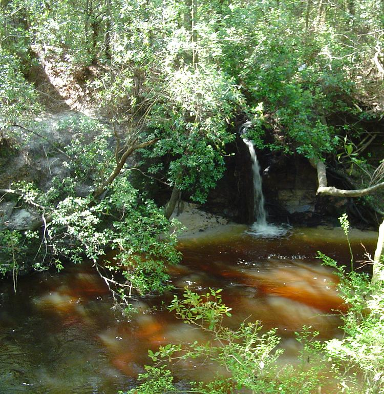 Waterfall along Econfina Creek<br /> Sue Wiles / FTA