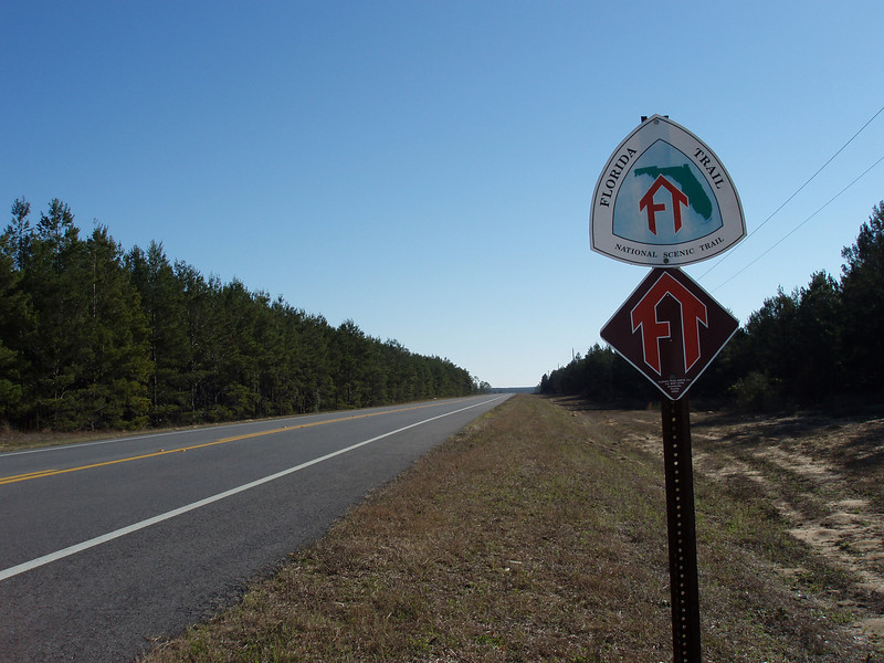 Along SR 20<br /> photo credit: Robert Coveney / Florida Trail Association