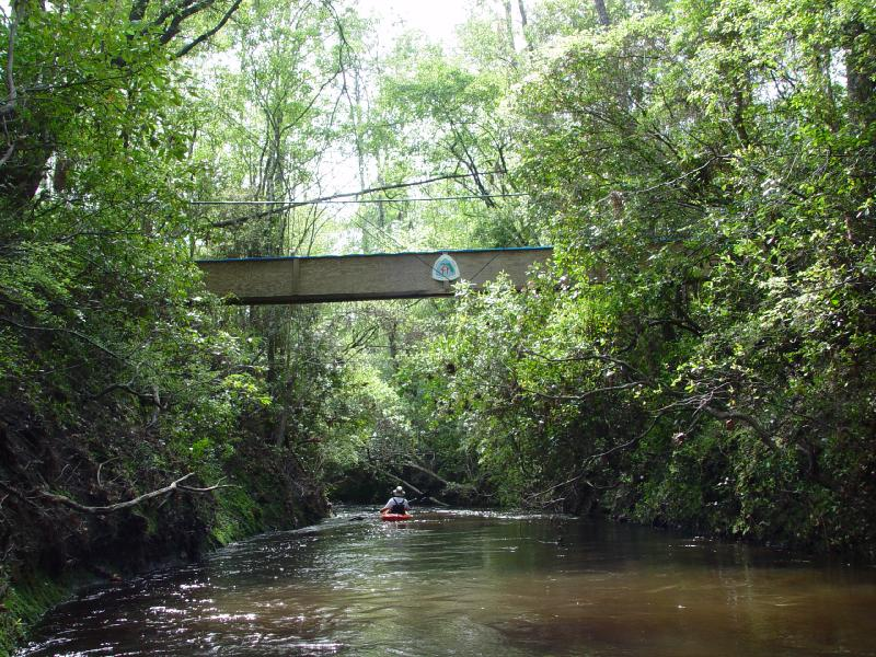 Kayaking Econfina Creek under Fender Bridge<br /> Sue Wiles / FTA