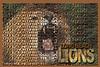 Longbeach Postcard