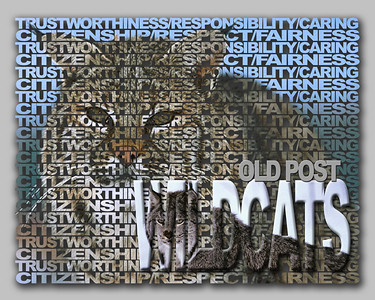 Old Post Wildcats