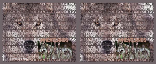 Wheatlands Mug