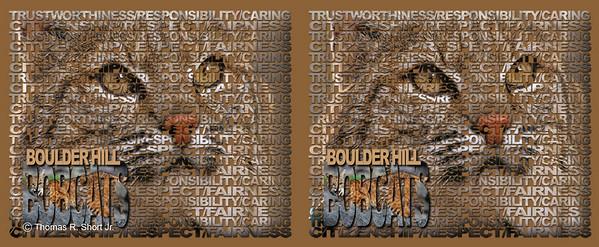 Boulder Hill Mug