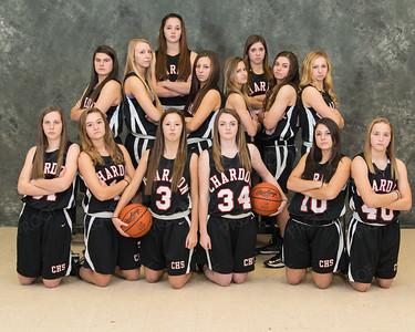 Basketball Girls Varsity 2