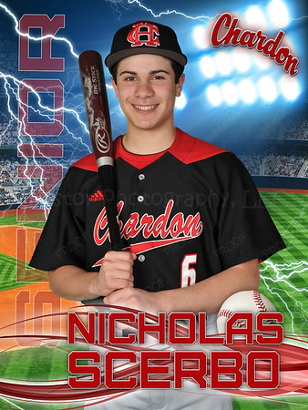 Nicholas Scerbo CHS - Baseball