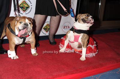 Ziggy and Matty photo by Rob Rich/SocietyAllure.com © 2014 robwayne1@aol.com 516-676-3939