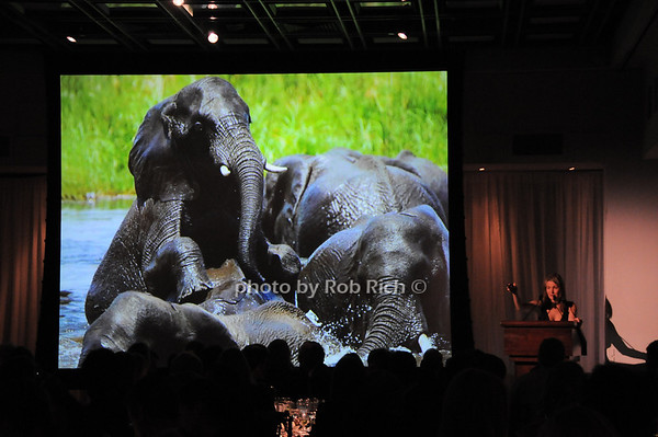 Eliza Osborne<br /> photo by Rob Rich © 2010 robwayne1@aol.com 516-676-3939