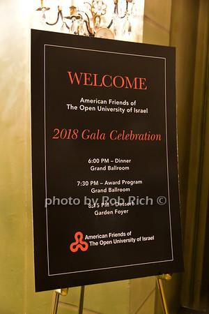 "AFOUI ""The Future is Open"" 2018 Gala"